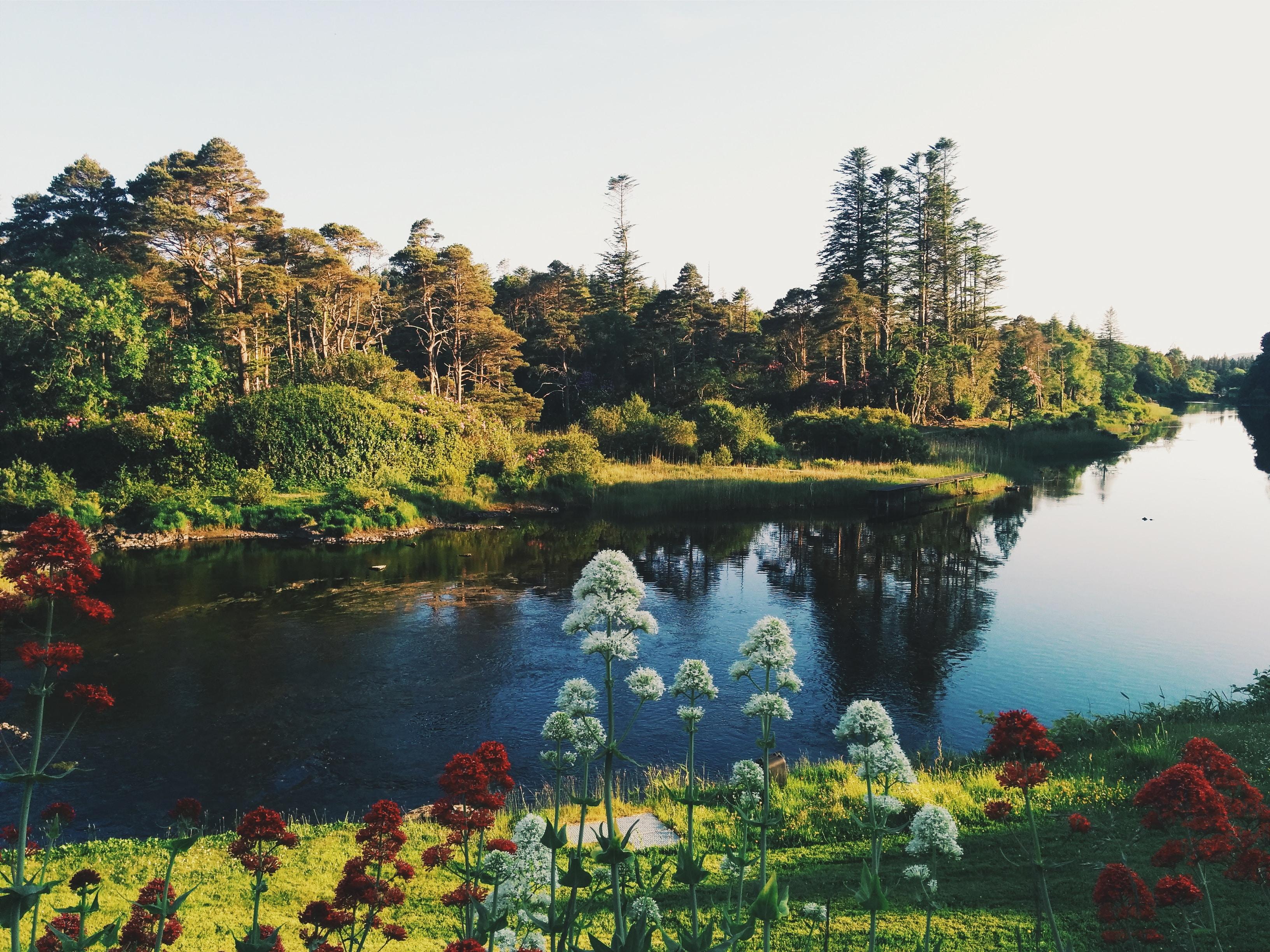 Cảnh đẹp như tranh vẽ tại Ireland.